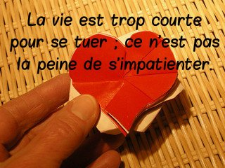 citation chagrin d'amour